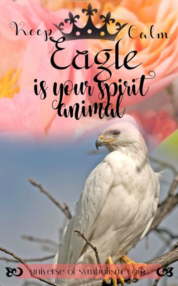 Keep Calm ~ Eagle is your Spirit Animal