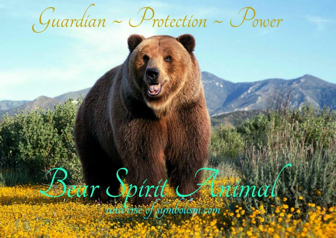 Bear Spirit & Totem Animal Symbolic Powers & Meaning of Bear ~ Bear is a symbol of strength and protection, illumination and healing