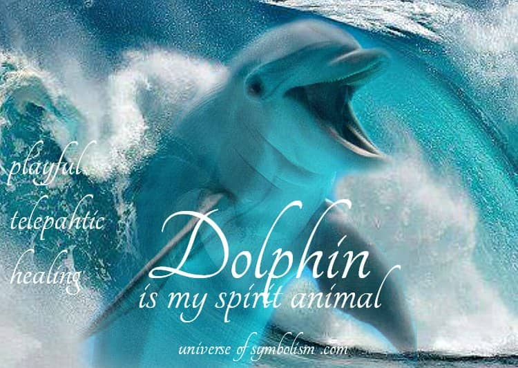 Dolphin Spirit Animal Healing & Totem Medicine with Dolphin Symbolism & Spiritual Meaning plus Dream Symbolism and beautiful video! Enjoy!
