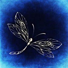 Dragonfly Tattoo Idea