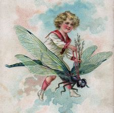 Fantasy Tattoo Girl riding Dragonfly