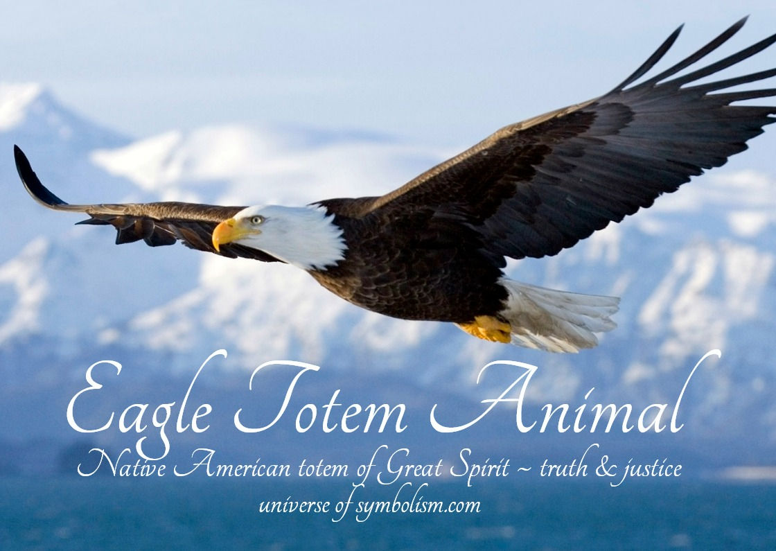 Eagle Symbolism Meaning Spirit Totem Power Animals