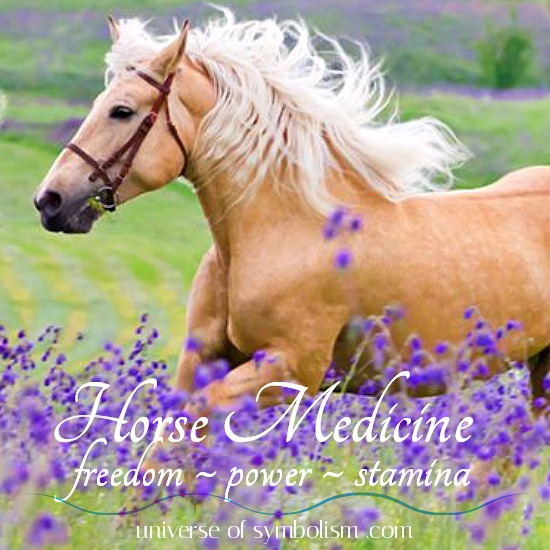 Horse Symbolism & Meaning, Horse Spirit Animal Powers & Medicine, Native American & Celtic Meaning of Horse
