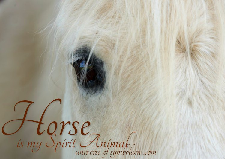 Horse Spirit & Totem Animal With Healing & Medicine Powers | Symbolism & Meaning of Horse | Dream Symbolism of Horse