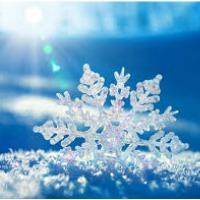 snowflakes ~ christmas symbols