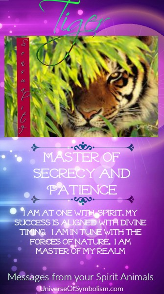 Tiger Symbolism & Meaning Graphic