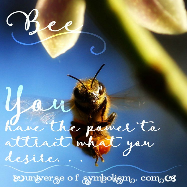 Bee Symbolism & Meaning   Spirit, Totem & Power Animal Medicine.  The bee is a global symbol of abundance