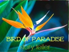 bird of paradise flower oracle