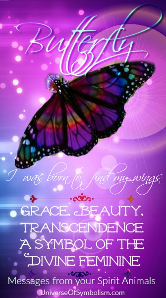 Butterfly spirit animal meaning ~ symbol of transformation