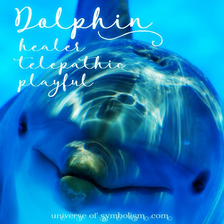Dolphin Spirit, Totem, Power Animal, Symbolism & Meaning | Dolphin Dream Symbolism | Dolphin Symbols, Spiritual Meaning of Dolphin