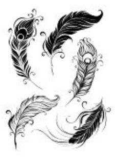 feather tattoo whimsical stylized