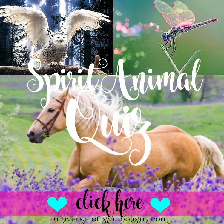 Spirit Animal Quiz - Universe of Symbolism | What is my spirit animal quiz