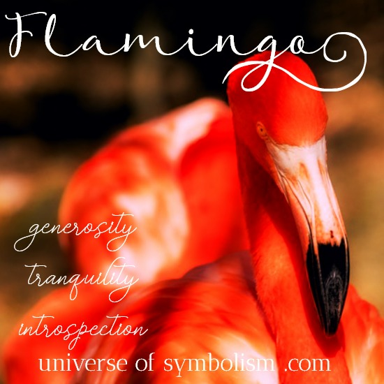 Flamingo Symbolism & Meaning | Flamingo Spirit, Totem & Power Animal Healing and Magical Attributes | Dream Symbolism of Flamingo