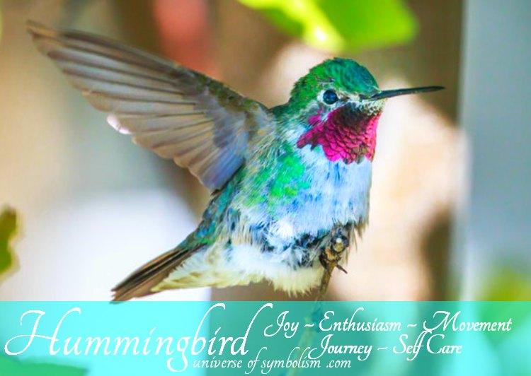 Hummingbird Spirit Totem Power Animal Symbolism and Meaning