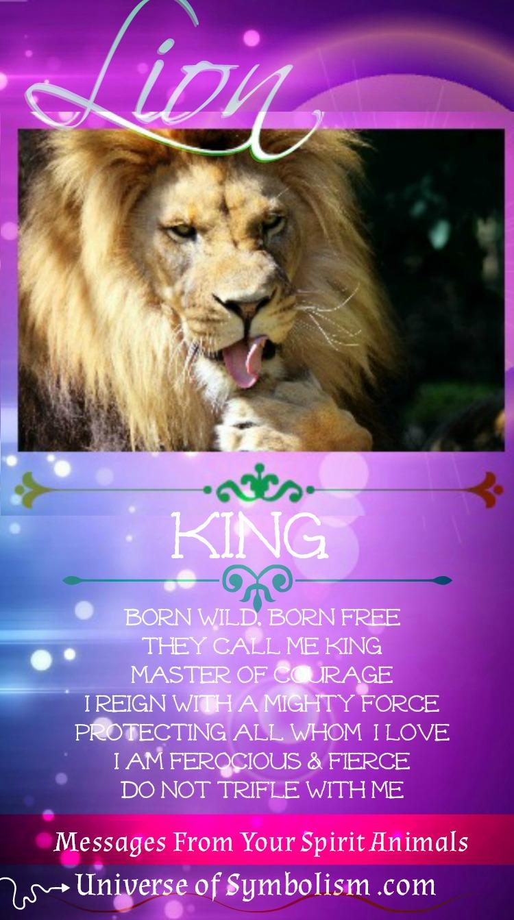 Lion Spirit Animal Messenger ~ the King of Kings