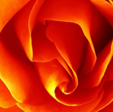 Orange Color Meaning & Symbolism | Orange Color Names