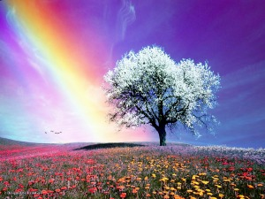 Rainbow symbolism... promises of a new and better day