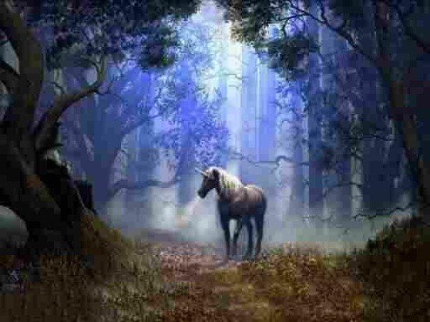 Unicorn Spirit & Totem Animal